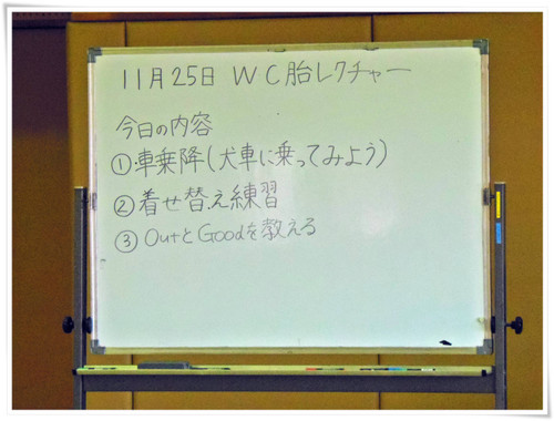 Pb250367
