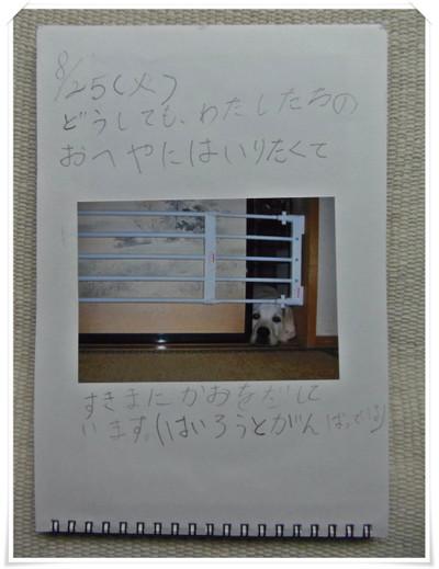 P6123625